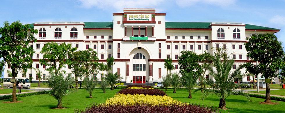 Đại học Tân tạo