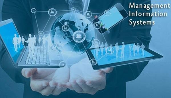 Ngành Hệ thống thông tin quản lý sở hữu mức lương cao