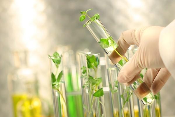 Giới thiệu chi tiết về ngành Kỹ thuật sinh học