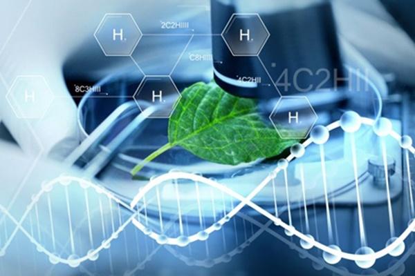 Những tố chất phù hợp với ngành Công nghệ sinh học