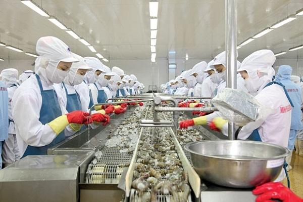 Ngành Công nghệ chế biến thủy sản là gì?