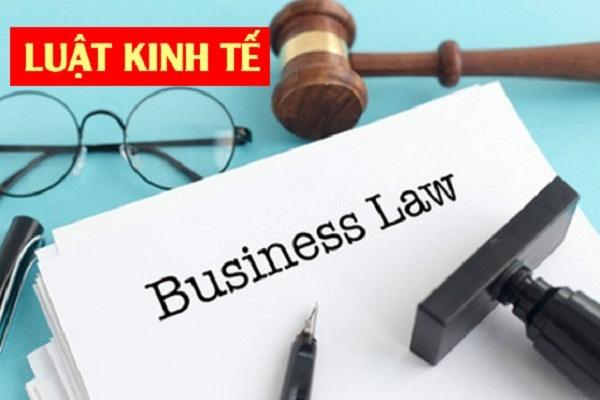 Ngành Luật kinh tế là gì và cơ hội việc làm như thế nào?